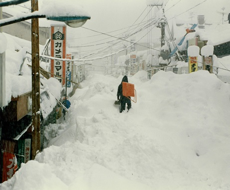 県 情報 新潟 雪