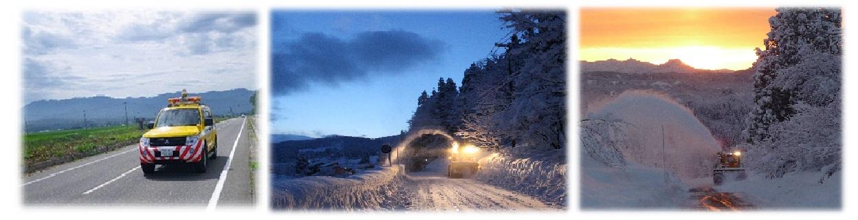 情報 新潟 県 雪